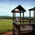 Orvis-at-Pursell-Farms-Sporting-Clays